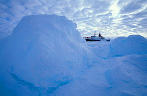 Research icebreaker ship, Polarstern, moored on ice floe, Weddell Sea, Antarctica (Image not available for advertising use) - Ingo Arndt