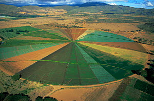 Aerial view of irrigation circle for growing vegetable crops and cultivated flowers, Naivasha, Kenya  -  Anup Shah