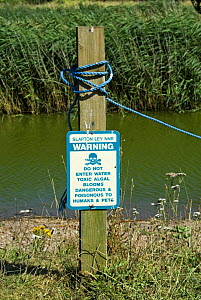 Sign warning of toxic Algal bloom, Slapton Ley NNR National Nature Reserve, Devon, England, 2006.  Note green water colour. - Adrian Davies