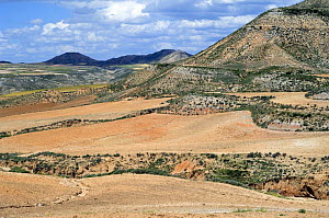 Saline steppes and valleys in deforested Bardenas Reales, Spain  -  Philippe Clement