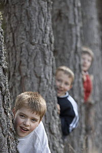 Three boys playing in forest, Cairngorms National Park, Scotland, UK 2006 Model released.  -  Pete Cairns
