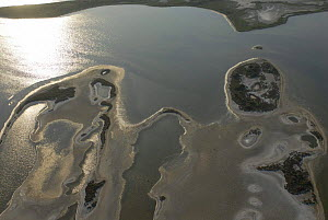 Aerial view of lagoons in the Camargue, Aigues Mortes, France  -  Jean E. Roche