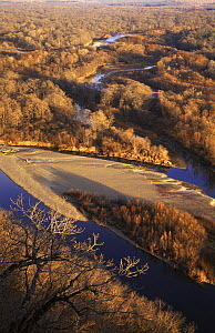 Aerial view of River Bikin, right tributary of Ussuri River, with virgin riparian forest, N Ussuriland, SE Siberia, far east Russia  -  Konstantin Mikhailov