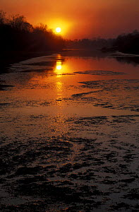Sunset over the Birkin river, North Ussuriland, Primorsky, SE Siberia, far east Russia  -  Konstantin Mikhailov