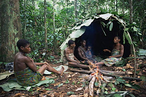 By'Aka pygmy women at forest camp, with shelter built from leaves, Bayanga, Central African Republic, 2003  -  James Aldred