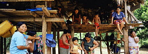Embera Indian women and children in traditional thatched house. Mouge village, Darien Province, Panama, Central America 2006  -  James Aldred