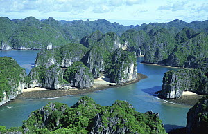 Aerial view of limestone island formations in Ha Long Bay, Vietnam, 2005. Filmed for BBC Planet Earth series.  -  Huw Cordey