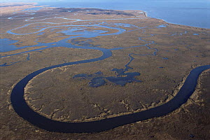 Aerial view of Bombay Hook NWR, Delaware Bay, Delaware, USA.  Salt marsh and refuge for migratory flocks of Greater snow geese. November 2005, BBC Planet Earth  -  Mark Brownlow