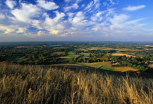Sussex Weald from Ditchling Beacon, South Downs, Sussex, England, UK  -  Simon Colmer
