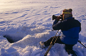 Cameraman Martin Saunders filming at ice hole for BBC 'Kingdom of the Ice Bear', April 1996, Leifdefj, Svalbard, Norway  -  Mats Forsberg