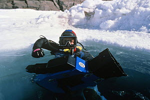 Doug Allan, cameraman, filming with underwater camera for National Geographic, Canadian Arctic  -  Doug Allan