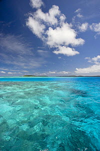 Scenic over coral reef, Kingdom of Tonga, South Pacific. 2005  -  Sue Flood