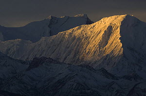 Tilicho Peak with Annapurna I in background, at sunrise, viewed from Syangboche, Lower Mustang, Nepal  -  Bernard Castelein