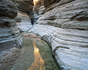 Sinous banded narrows of Matkatamiba Canyon, Grand Canyon NP, Arizona, USA  -  Jack Dykinga