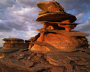 Petrified sand dunes with eroded sandstone flakes at sunset, Paria Canyon-Vermilion Cliffs Wilderness, Arizona, USA  -  Jack Dykinga