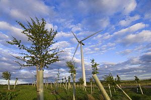 2.3 megawatt wind turbine with hardwood tree saplings, Scotland UK, May 2006 - Niall Benvie