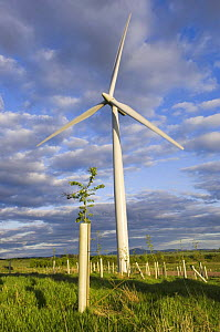 2.3 megawatt wind turbine with hardwood tree saplings, Scotland UK. May 2006 - Niall Benvie