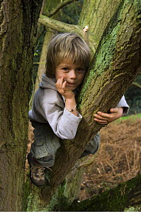 Child sitting in tree, Belgium  -  Philippe Clement