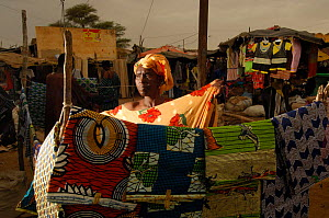 Fulani woman selling colourful material and handicraft at the market, North Senegal, West Africa, 2005  -  Laurent Geslin