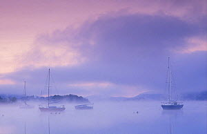 Boats on Windermere at dawn, Bowness-on-Windermere, Lake District National Park, Cumbria, England, UK  -  David Noton