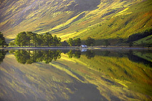 Reflections on the shore of Buttermere at dawn, Cumbria, Lake District, Cumbria, England, UK  -  David Noton