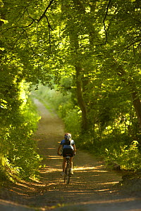 Woman on mountain bike cycling down leafy country lane nr Child Okeford, Dorset, England, UK  -  David Noton