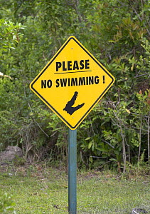 Sign warning potential swimmers of Alligators, Everglades, Florida, USA  -  Barry Bland