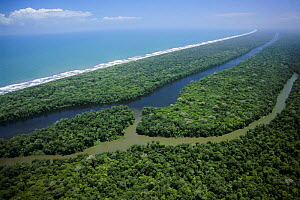Aerial view of 'canal' and Caribbean coastline, Tortuguero NP, Costa Rica, Central America 2006  -  Michael Pitts
