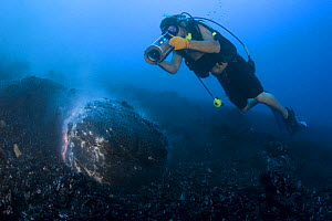 Videographer Shane Turpin films pillow lava erupting underwater at Kilauea Volcano, Hawaii, MOdel released MR 382 - Doug Perrine