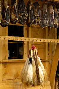 Yak tails for sale - the hair is used for making caligraphy brushes. Zhongdian, Yunnan Province, China 2006 - Pete Oxford