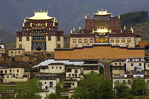 Songzhanling Monastery - founded in the 17th century by the fifth Dalai Lama, Zhongdian, Deqin Tibetan Autonymous Prefecture, Yunnan Province, China 2006  -  Pete Oxford