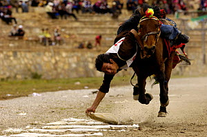 Horse and rider competing in Grabbing scarves event at the Horse Racing Festival or 'Heavenly Steed Festival'. Zhongdian, Deqin Tibetan Autonymous Prefecture, Yunnan Province, ChinaPrefecture, Yunnan...  -  Pete Oxford