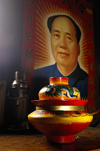 Noodle bowl in the cooking area of a Tibetan house with a poster of Chairman Mao on the wall. Zhongdian, Deqin Tibetan Autonomous Prefecture, Yunnan Province, China 2006  -  Pete Oxford