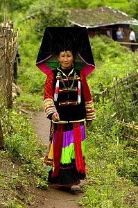 Colourful belt Yi woman - one of the sub-groups of the Yi Ethnic minority people from the mountains near Liuku, Nujiang Prefecture, Yunnan Province, China 2006  -  Pete Oxford