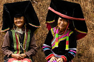 Colourful belt Yi women - one of the sub-groups of the Yi Ethnic minority people from the mountains near Liuku, Nujiang Prefecture, Yunnan Province, China 2006  -  Pete Oxford
