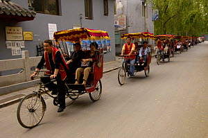 Chinese rickshaws driving through the narrow streets in Hutong, an old neighbourhood in Beijing, China   2006  -  Pete Oxford