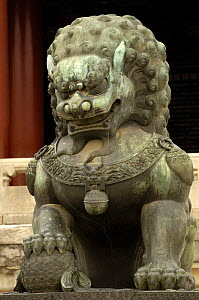 Chinese mythical animal, Forbidden City (National Palace Museum), Beijing, China 2006  -  Pete Oxford