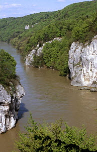 The Danube Canyon, nature conservation area Weltenburger Enge, Kelheim county, Bavaria, Germany  -  Martin Gabriel