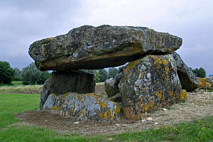 Neolithic Dolmen, burial chamber site, from the Iron Age, Liniez, France - Philippe Clement