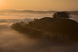 Downham hill in mist at sunset from Uley Bury, Gloucestershire, England  -  Nick Turner