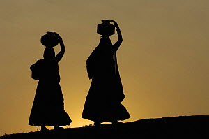 Silhouette of Rabari women carrying water on their heads, Rann of Kutch, Gujarat, India, 2006  -  Pete Oxford