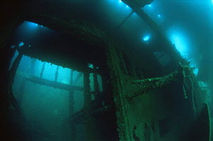 Interior of shipwreck of Japanese Whaling Ship sunk in WWII, 1943, Borneo  -  Michael Pitts