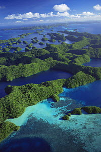 Aerial view of Outer Rock Islands, Palau, Melanesia, pacific ocean islands  -  Michael Pitts