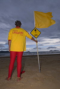 Lifeguard on beach with sign and flag warning people of Jellyfish, next to stinger-resistant enclosure, Queensland, Australia  2006 - Jurgen Freund