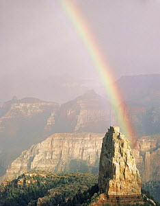 Rainbow after a storm over Mount Hayden, Point Imperial, North Rim, Grand Canyon National Park, Arizona, USA.  -  Jack Dykinga