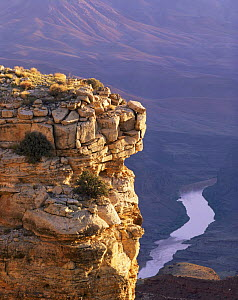 Sunrise on stratified rim rock tower at Grandview Point with meandering Colorado River riffle below, Grand Canyon National Park, Arizona, USA.  -  Jack Dykinga