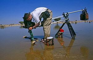 Mark Payne Gill on location in the central desert of Oman, filming Fairy shrimps {Triops sp} in a desert lake after heavy rainfall, Jan 1997. For BBC television programme  -  Mark Payne-Gill