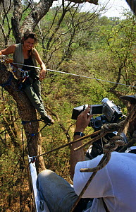 John Waters filming Presenter Charlotte Uhlenbroek on a zip wire. On location in Madagascar, filming for BBC television series 'Cousins', 1999  -  John Waters