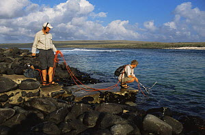 Sound recordists Chris Watson and Joe Stevens recording underwater sounds of sealions, Galapagos  -  Patrick Morris