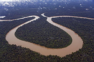Aerial view of meander in Rio Yavari, Amazonia, Peru FOR SALE IN UK ONLY  -  Ingo Arndt